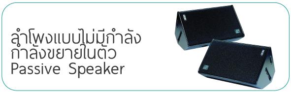 Passive Speaker